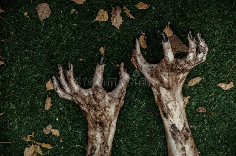 Tema do horror e do Dia das Bruxas: As mãos terríveis do zombi sujas com pregos pretos encontram-se na grama verde, o apocalipse  imagens de stock royalty free