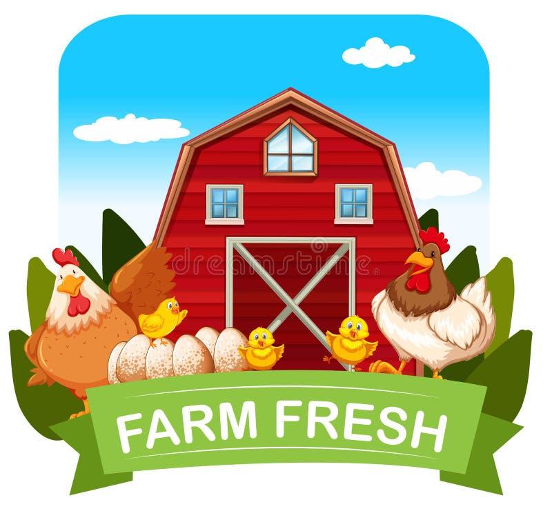 Tema fresco da exploração agrícola com galinhas e celeiro ilustração do vetor