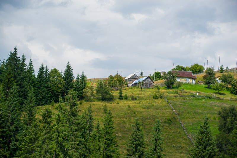 Tema rurale di estate fotografie stock