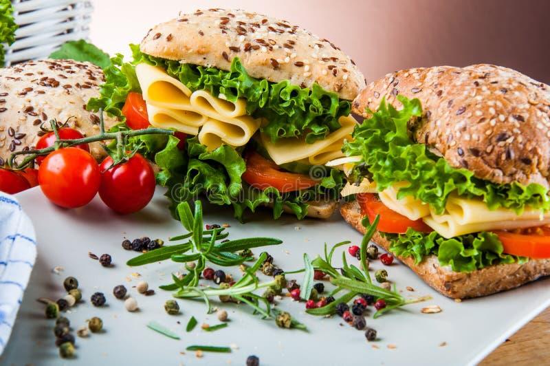 Tema saturato del panino immagine stock