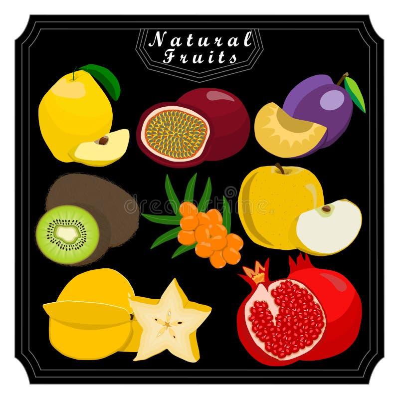 Temauppsättningfrukterna royaltyfri illustrationer