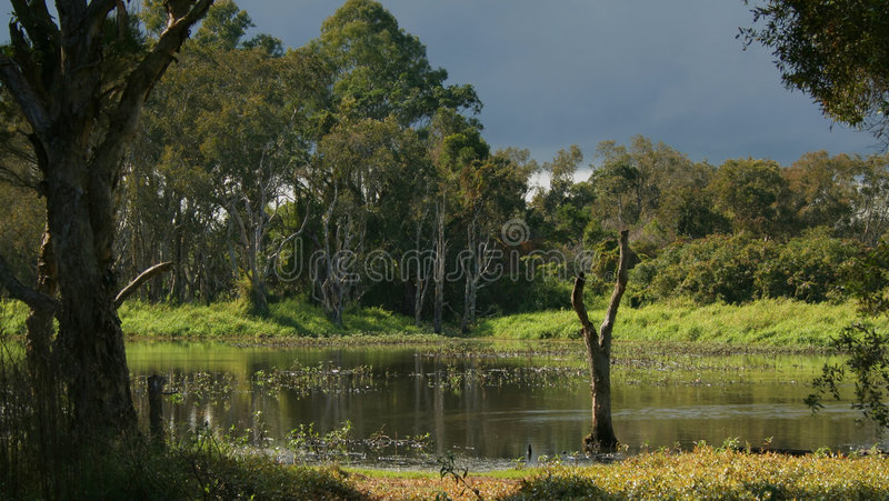Tempête 3 de zones humides photographie stock