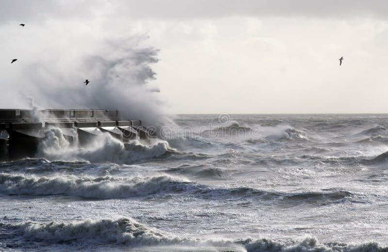 tempête de mer images libres de droits