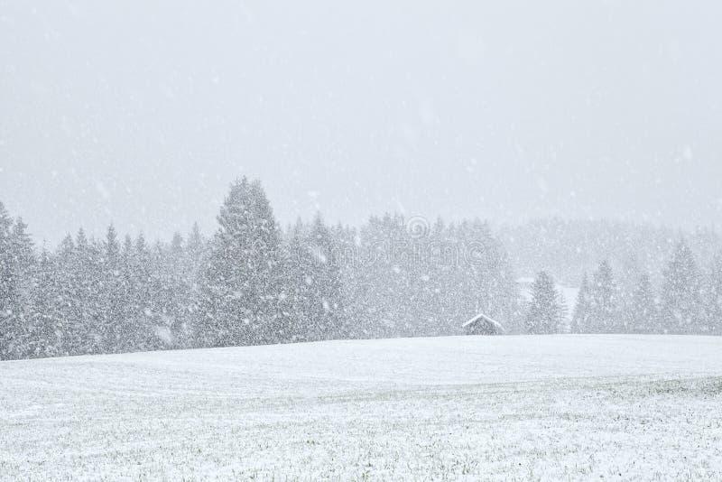 Tempête de neige dans des prés de Bavariah photographie stock