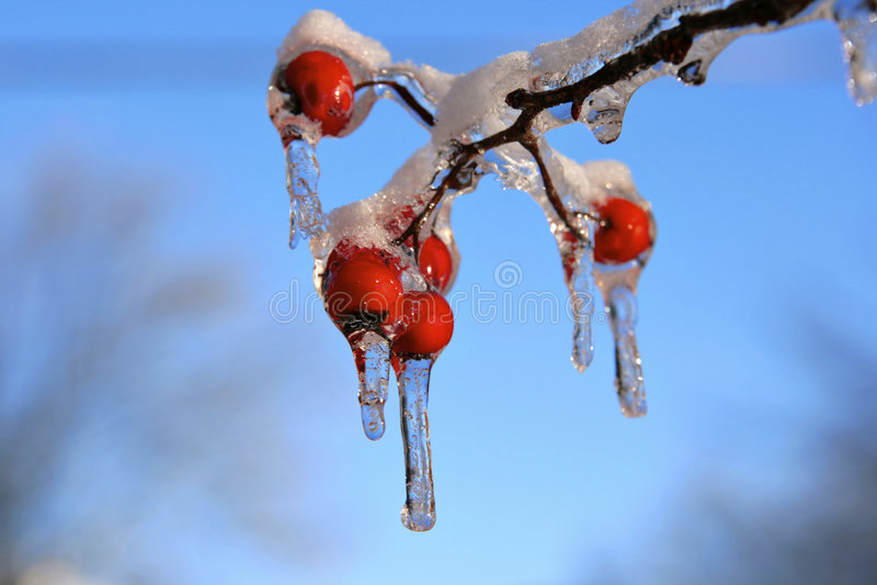 Tempête de neige et de glace image libre de droits