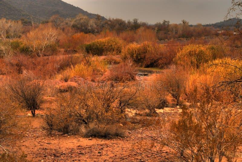 Tempête du désert approchant 9 photographie stock