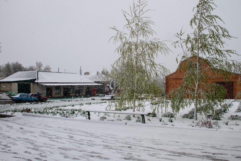 Tempête soudaine de neige d'avril en Ukraine Cyclone de neige d'avril photographie stock libre de droits