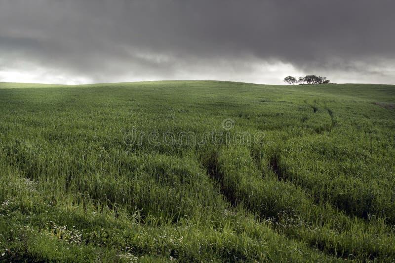 Tempête sur la plaine photographie stock libre de droits