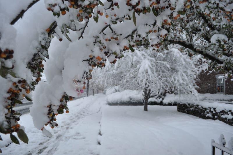 Tempête tôt de neige d'hiver en Pennsylvanie images stock