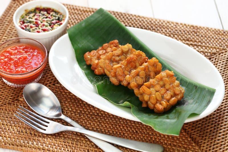 Tempe goreng, gebraden tempeh, Indonesisch vegetarisch voedsel stock afbeelding
