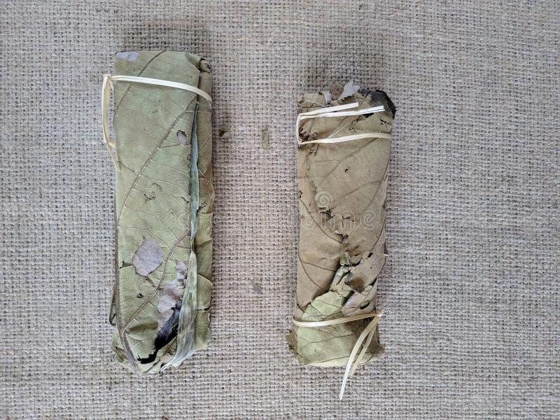 Tempe zawija w tekowych liściach, Indonezja tradycyjny jedzenie fotografia stock