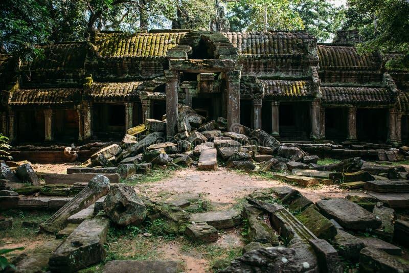 Tempel Angkor Wat i Cambodja, ta Prohm, Siem Reap arkivbilder