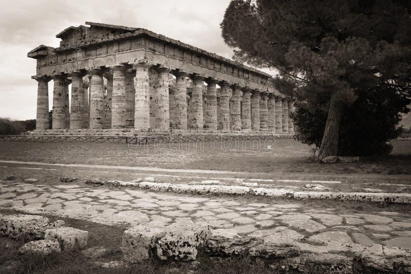 Tempel av Hera Paestum salerno Campania italy fotografering för bildbyråer