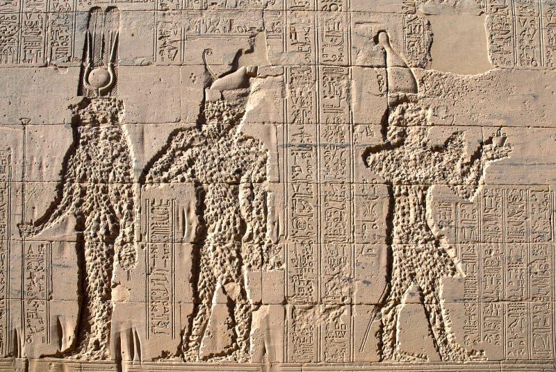 Tempel av Philae royaltyfri foto