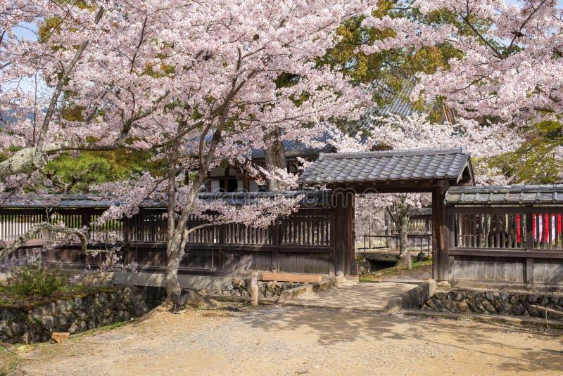 Tempel Daikaku -daikaku-ji bij arashiyama, Kyoto, Japan royalty-vrije stock foto