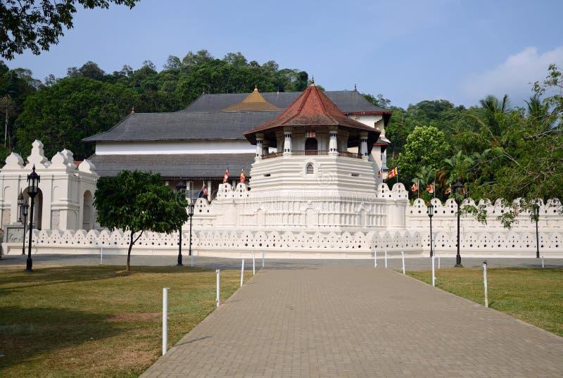 Tempel des Zahnes lizenzfreie stockbilder