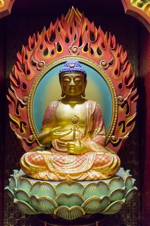Tempel för Buddhatandrelik royaltyfri bild