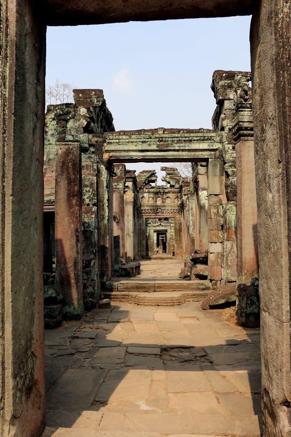 Tempel för Ta Prohm i Angkor Wat, Cambodja royaltyfria bilder
