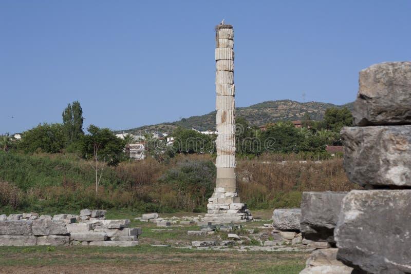 Tempel van Artemis één van wonder zeven van de oude wereld - Selcuk, Turkije Ooievaarsnest in een oude kolonie in het midden van  stock fotografie