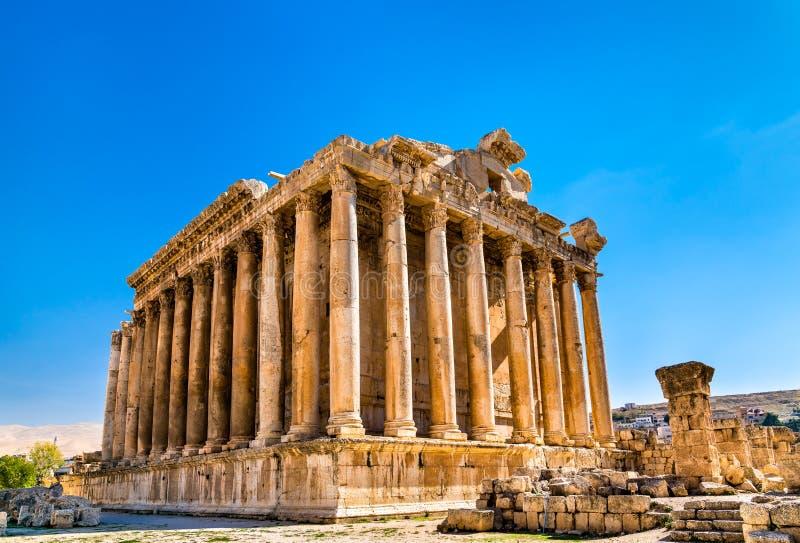Tempel van Bacchus in Baalbek, Libanon stock foto