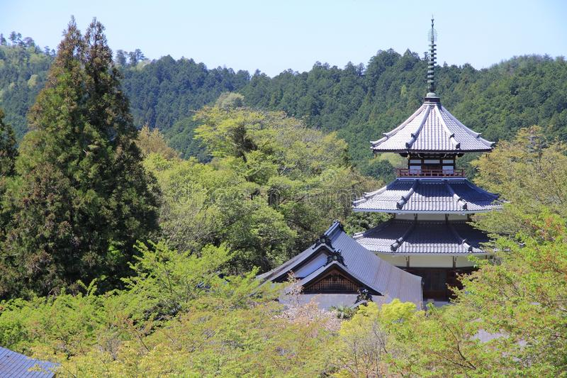 Tempel in Yoshino stockbild