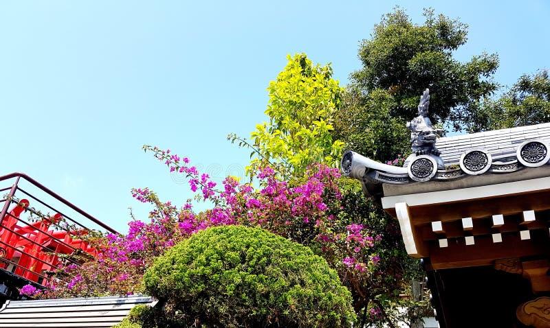 Tempeldetail, Okinawa Japan stock foto's