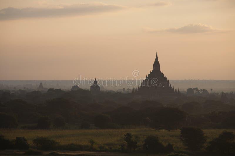 Tempelen av det Archaeological zonplanerar i Bagan i ottasolljuset Myanmar (Burma) arkivfoto