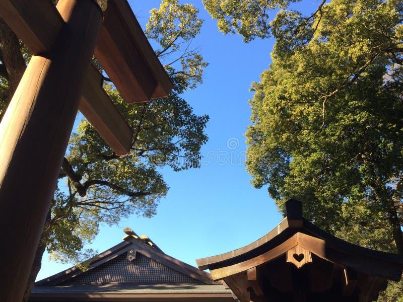Tempelområde royaltyfri foto