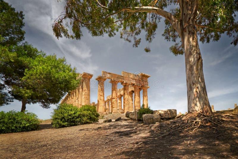 Tempelruïnes, Selinunte, Sicilië, Italië royalty-vrije stock afbeeldingen