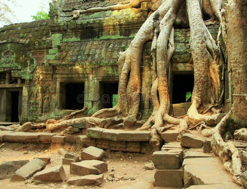 Tempels stock afbeeldingen