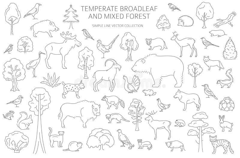 Temperate broadleaf las i mieszany lasowy biome Ziemnego ekosystemu ?wiatowa mapa Zwierzęta, ptaki i rośliny ustawiający, Prosty  ilustracji