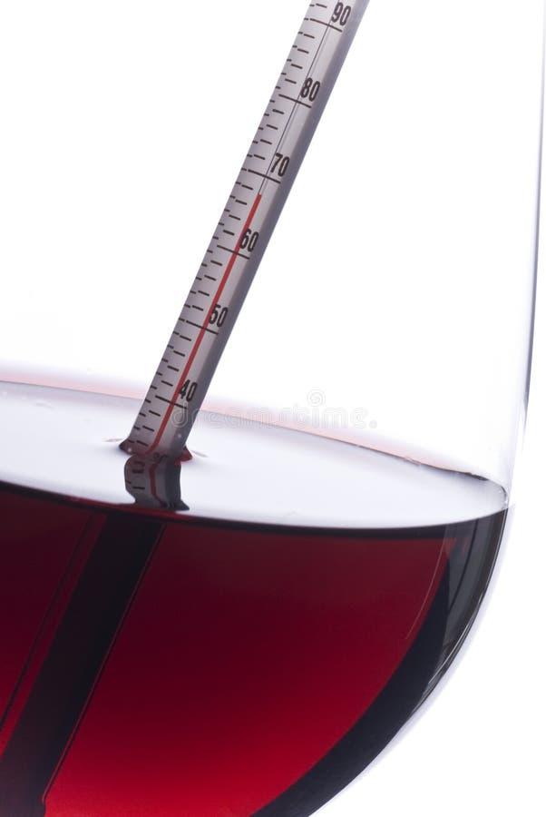 Temperatura di misurazione del vino rosso con un termometro fotografia stock