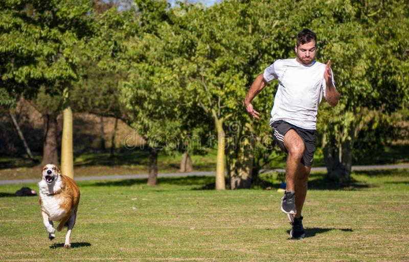 Man and dog, friends and companions. Temperley, Buenos Aires, Argentina. 19 June 2019. A man and his dog train in a public park royalty free stock image