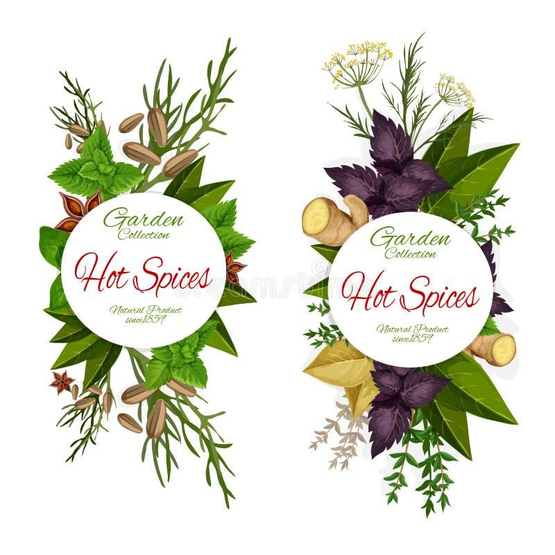 Tempero de ícones das ervas e das especiarias, mercearia ilustração stock