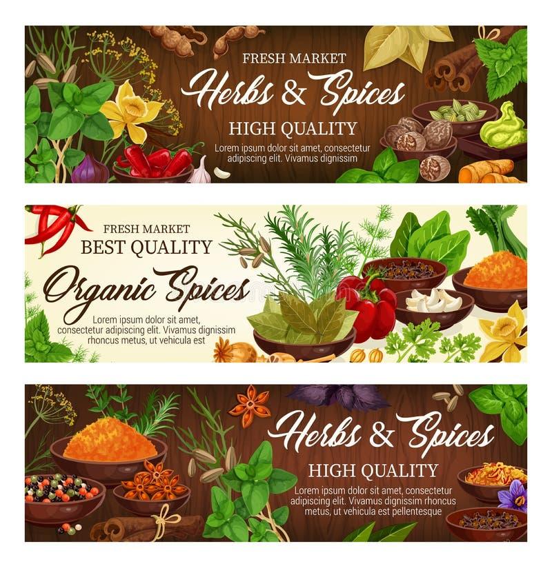 Temperos, ervas do vetor e especiarias, condimentos ilustração do vetor