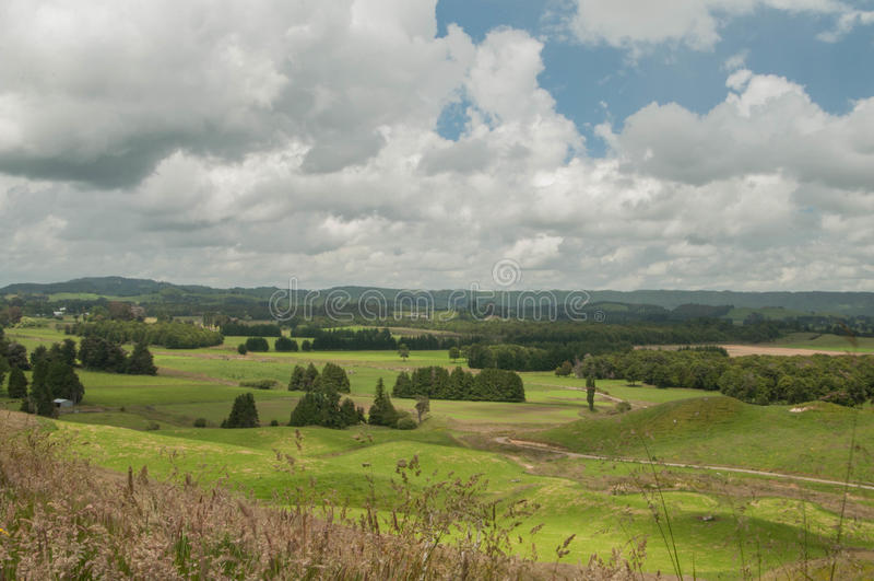 Tempesta aspettante La Nuova Zelanda rurale immagini stock