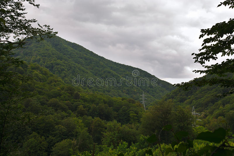 Tempesta d'avvicinamento sopra le montagne boscose di estate fotografia stock libera da diritti