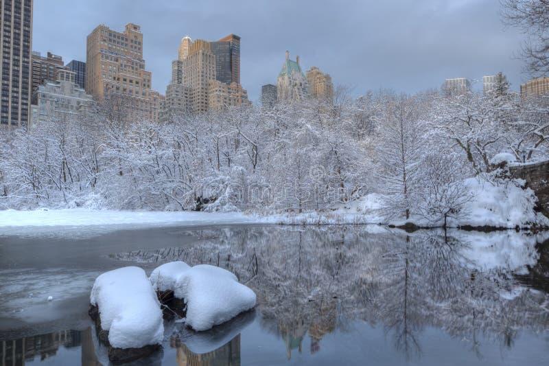 Tempesta della neve nel lago immagini stock
