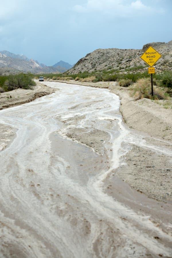 Tempesta di deserto di sud-ovest fotografia stock
