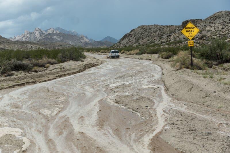 Tempesta di deserto di sud-ovest fotografia stock libera da diritti