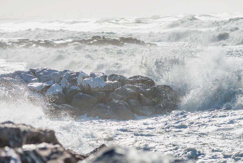Tempesta di inverno contro la spiaggia Onde e vento fotografia stock