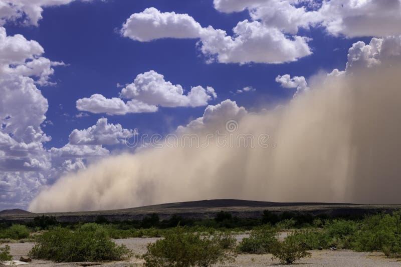 Tempesta di sabbia dell'Arizona Haboob con il cielo nuvoloso fotografia stock libera da diritti