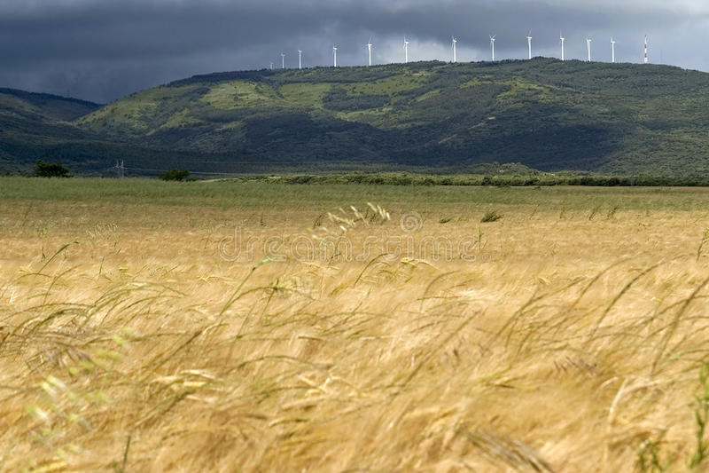 Tempesta e tuono, mulini a vento e campo di grano fotografia stock