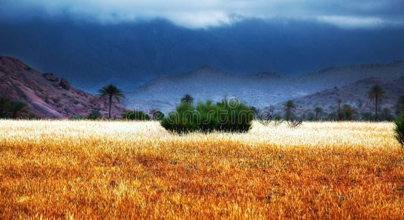 Tempesta nel Marocco fotografia stock libera da diritti