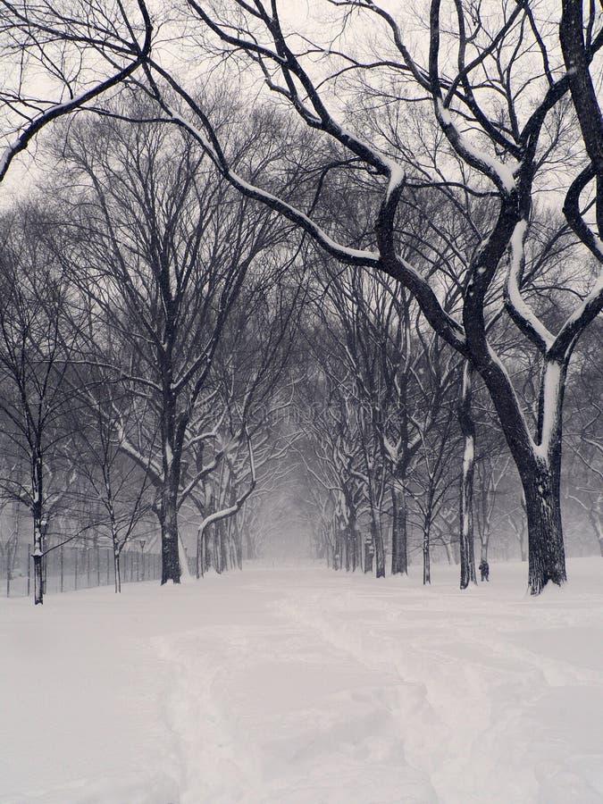 Tempestad de nieve de Central Park foto de archivo