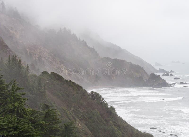 Tempestade da costa de Oregon fotografia de stock royalty free