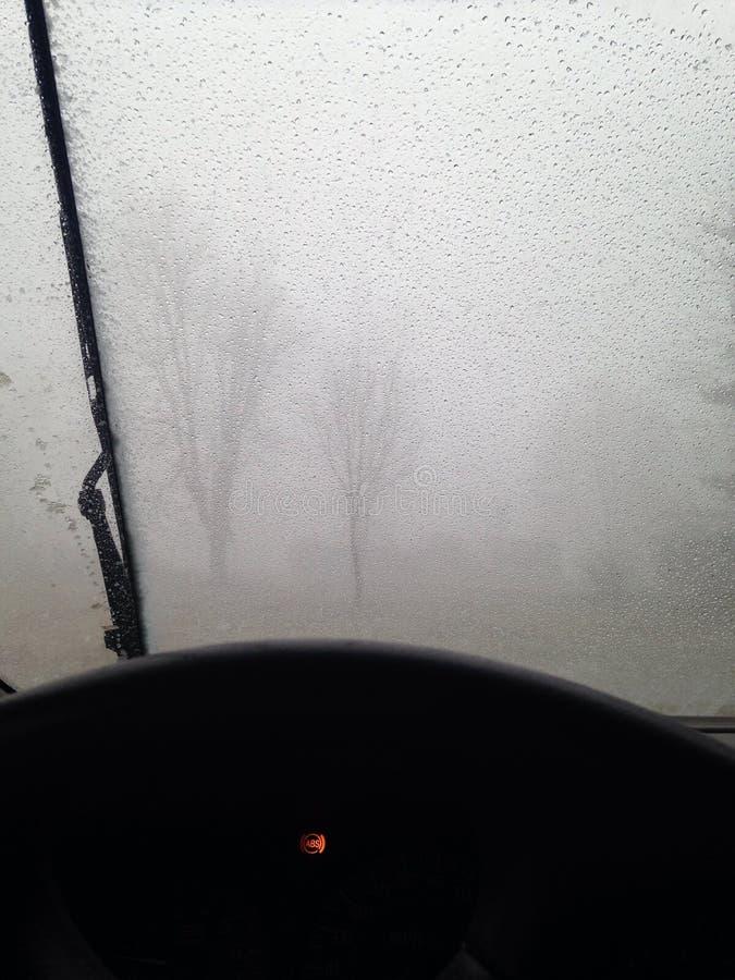 Tempestade da neve imagens de stock