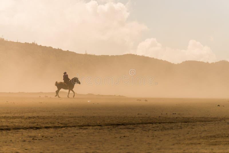 Tempestade de areia do deserto do cavaleiro do cavalo fotografia de stock royalty free