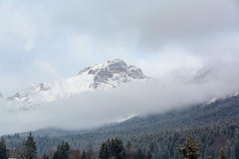 Tempestade de neve sobre Paganella Mountain em Dolomites, Itália imagens de stock