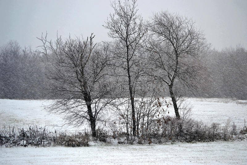 Tempestade do inverno foto de stock royalty free